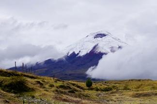 Ecuador: Vulkaan Cotopaxi