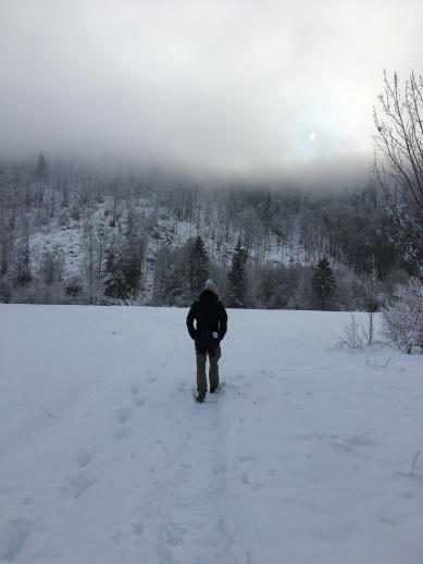Prachtig wandelen in de winter in Slovenië