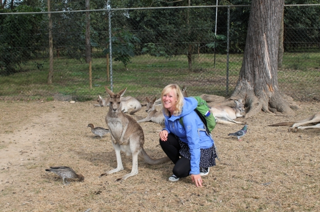 Co met kangoeroe
