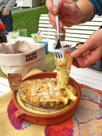 Kaas in Noorwegen