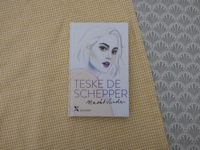 'Nachtvlinder' van Teske de Schepper